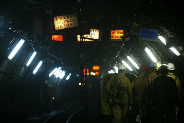 Górnictwo w Tauronie wychodzi na prostą?