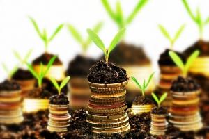 Wydajemy więcej pieniędzy na ochronę przyrody; emitujemy mniej CO2