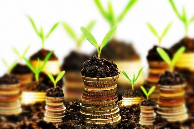 NFOŚiGW: w 2016 r. 4 mld zł na projekty środowiskowe