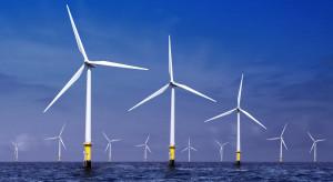 Będą badania środowiskowe dla farm wiatrowych na Bałtyku