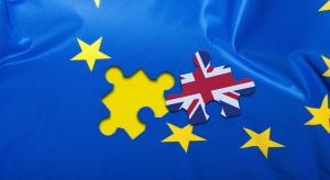 Brytyjski rząd ostrzega: skutki gospodarcze Brexitu destrukcyjne