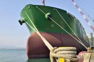 Największa flota masowców w COSCO Shipping Bulk