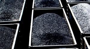 Węgiel, CO2, paliwa i metale. Najnowsze notowania