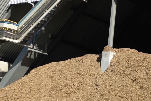 R. Gajewski, PIB: odbudowa konsumpcji biomasy przy spadku cen