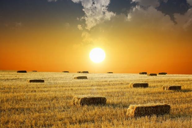 Ziemia rolna przestała drożeć