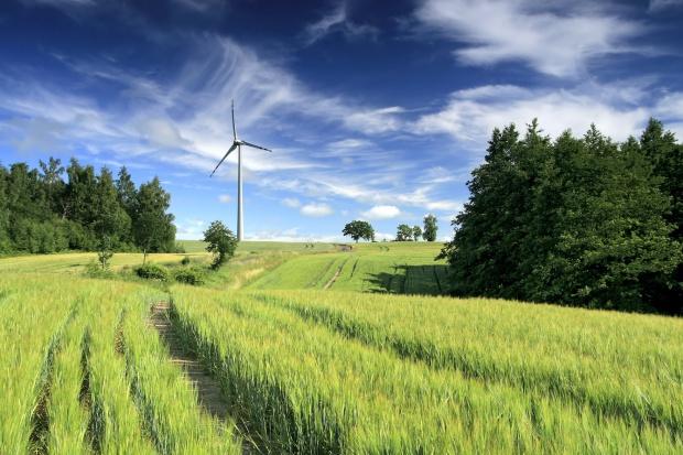 Bankowcy: nowe obciążenia siłowni wiatrowych groźne dla gospodarki