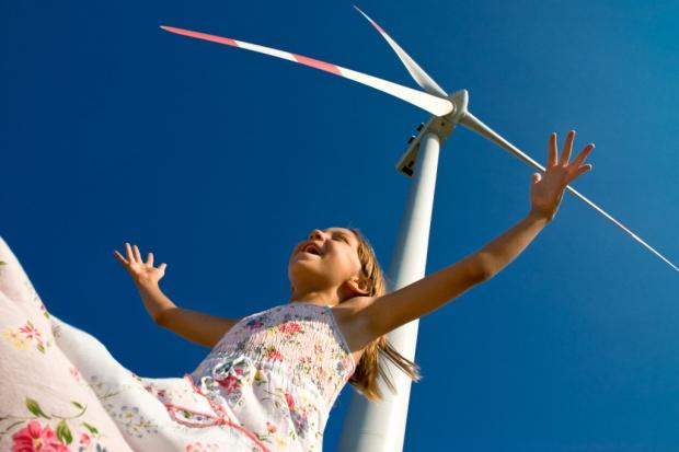 SEO apeluje o zbadanie szkodliwości turbin wiatrowych