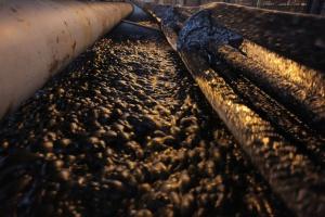 Turcja: zawaliła się część kopalni węgla; zginęło sześciu górników