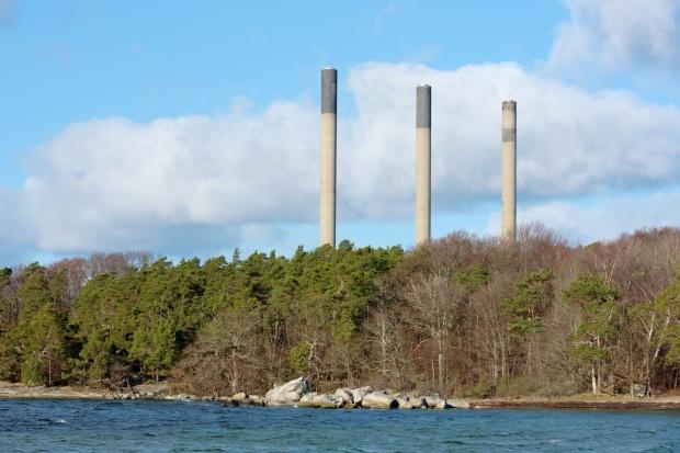 Pomysł LP na aukcję CO2 pochłoniętym przez lasy