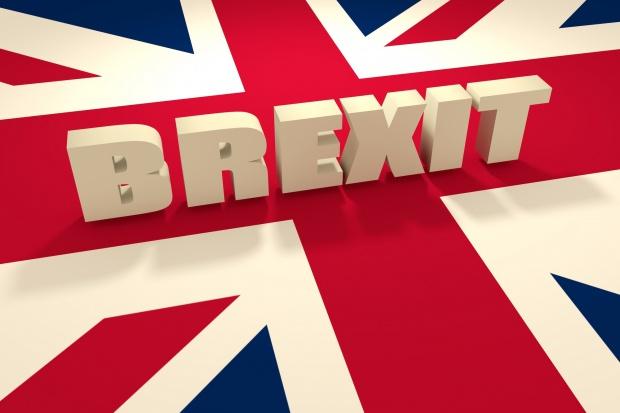 Brytyjski minister nie wyklucza wiz dla obywateli UE po Brexicie