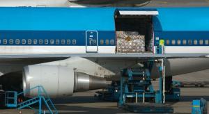 Niezły rok dla części przewoźników cargo powietrznego w Europie
