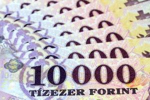 OECD: Węgry powinny zredukować wydatki publiczne