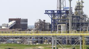Zakłady Azotowe Puławy – najniższa dywidenda od prawie dekady