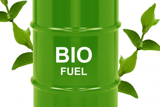 Nowelizacja ustawy o biokomponentach nie ograniczy wyłudzeń VAT