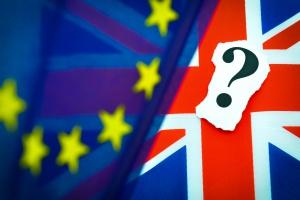 Jak Wielka Brytania dogada się z UE? Brexit aksamitny albo gorący