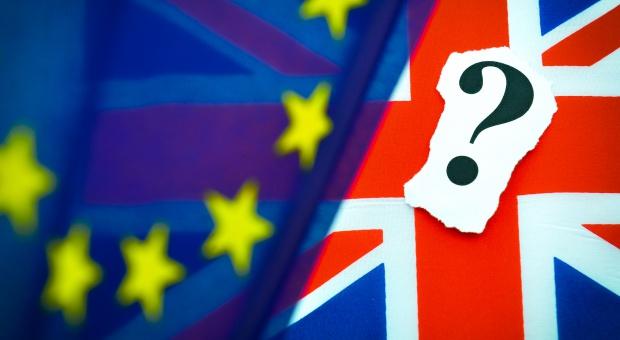 """Odrzucenie porozumienia z Unią może skutkować """"paraliżem brexitu"""""""