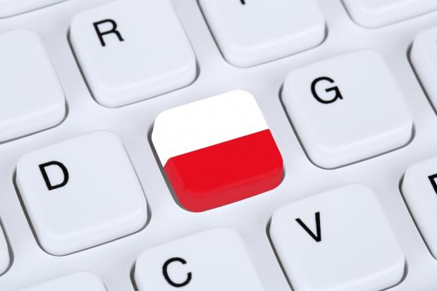 Wiceprezes PTI: z informatyzacją polskiego społeczeństwa nie jest najgorzej