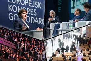 Europejski Kongres Gospodarczy filmowo