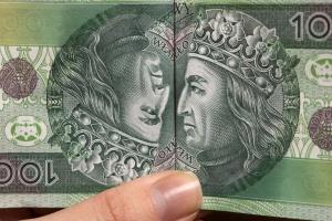 Mech: działania MSP spowodowały odpływ kapitału i zwiększenie ryzyka
