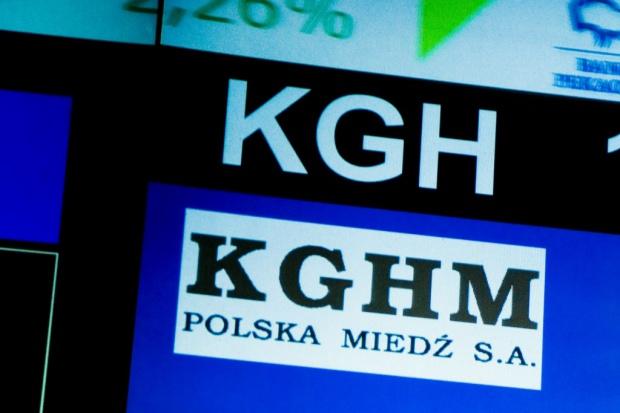 KGHM liderem wzrostów na WIG20