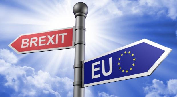 Izba Gmin za wnioskiem otwierającym opcję opóźnienia brexitu
