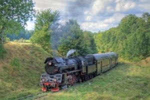 Parowozy będą obsługiwać regularne połączenia pasażerskie w Wielkopolsce