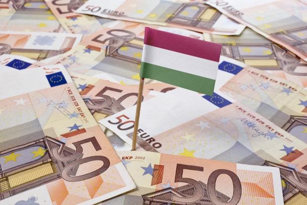 Węgry nie wykluczają przyjęcia euro do końca dekady