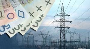 BGK pomógł Enei sfinansować zakup Elektrowni Połaniec