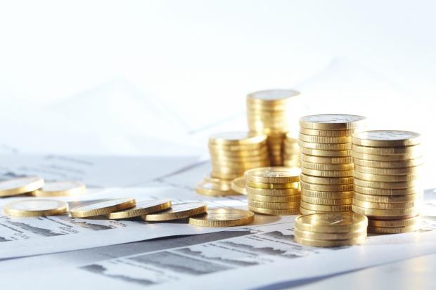 Wzrost zysku netto Sare w pierwszym półroczu
