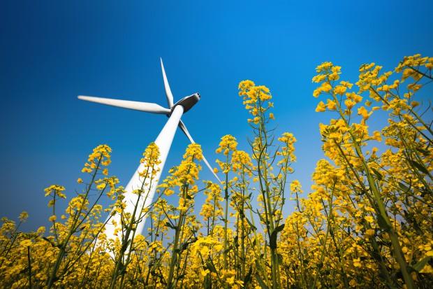Farmy wiatrowe kontra Energa: strony szykują się do procesu