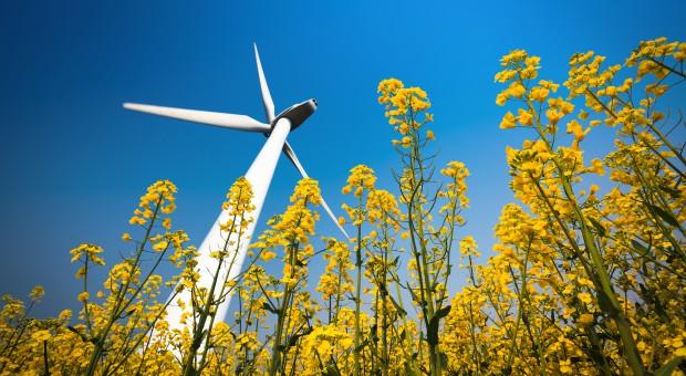 Energetyka odnawialna. Będzie nowa ustawa i... kolejne nowelizacje
