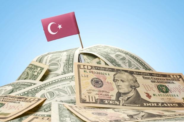 Operacja policji finansowej przeciwko zwolennikom Gulena w Turcji