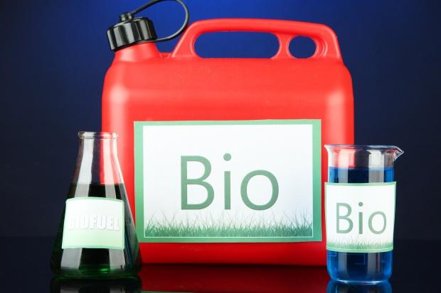 Rząd ma projekt noweli o biokomponentach i biopaliwach ciekłych