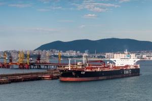 Wzrost przeładunków w terminalach morskich M. Czarnego