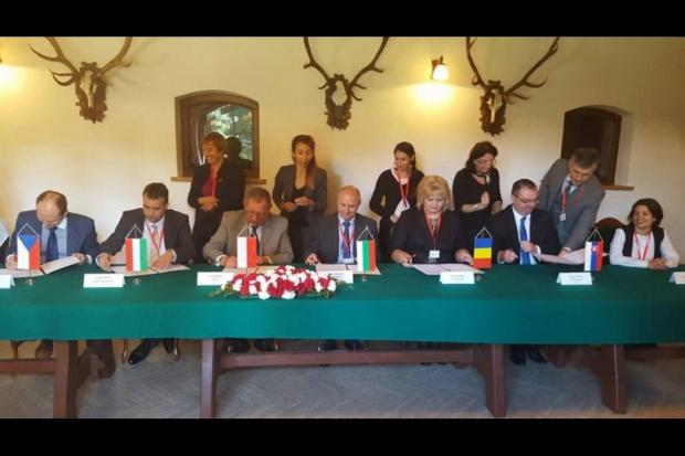 Państwa Grupy Wyszechradzkiej o redukcji emisji CO2 i bioróżnorodności