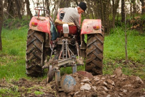 KRUS: podstawowa emerytura rolnicza wzrośnie do 1000 zł