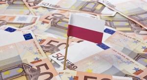 Kowalczyk: w tej kadencji rząd na pewno nie będzie wprowadzał euro