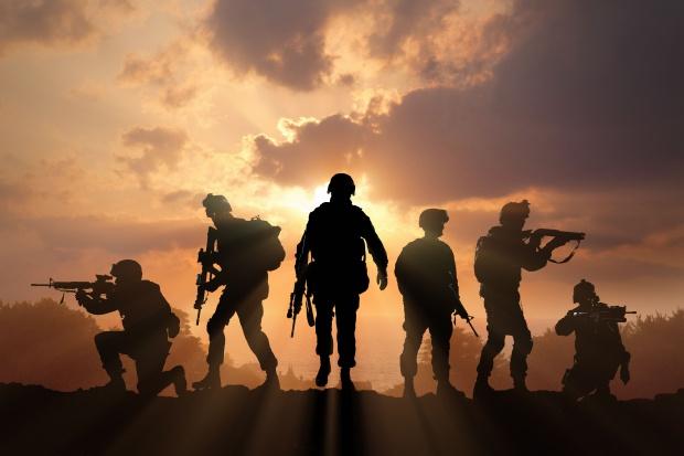 Na jaką broń mogą liczyć Wojska Obrony Terytorialnej?