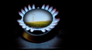 CEZ sprzedaje w Polsce coraz więcej prądu i gazu