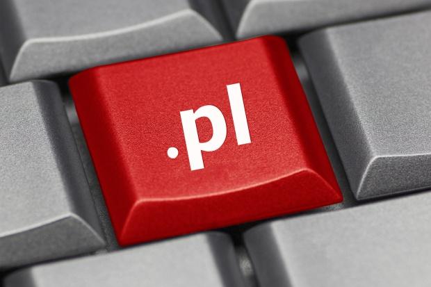 Jedna trzecia polskich firm bez strony www