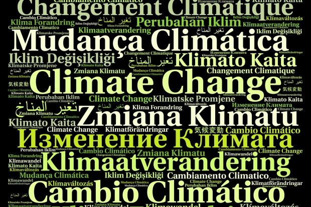 Katowice ubiegają się o organizację szczytu klimatycznego ONZ w 2018 r.