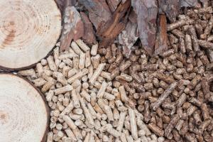 W tym mieście domy ogrzewać będą biomasą