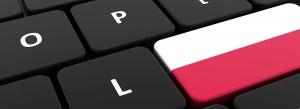 Tysiące domen codziennie przybywa w polskim Internecie