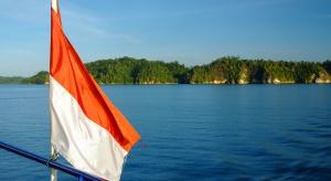 Polska spółka chce przerabiać biomasę w Indonezji