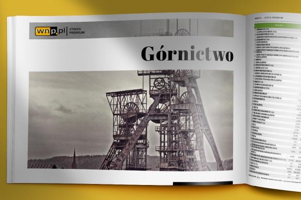 Skondensowany raport na temat polskiego górnictwa i sytuacji na światowym rynku węgla