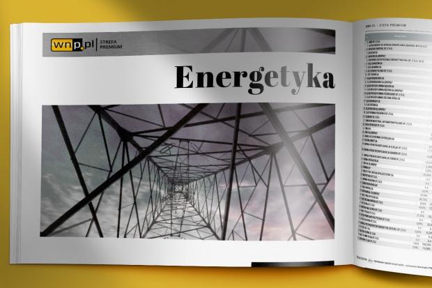 Branża w pigułce: energetyka