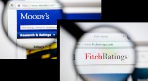 Agencja Fitch dobrze o polskim wzroście gospodarczym