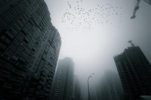 Ekspert: Internet Rzeczy pomoże w walce ze smogiem