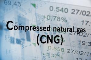 PGNiG zabiega o nowych klientów, by zwiększyć sprzedaż CNG