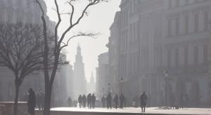Chcą wprowadzenia nowego obowiązku dla mieszkańców miast. Ma pomóc w walce ze smogiem